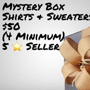 Men's Sweater/Shirt Mystery Box. At least 4 Items.